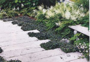 SunsetLandscaping_pavers_0004